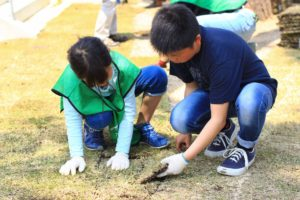 CHICHIBUGAHAMA PORT -芝はりワークショップ- 香川県三豊市父母ヶ浜海岸